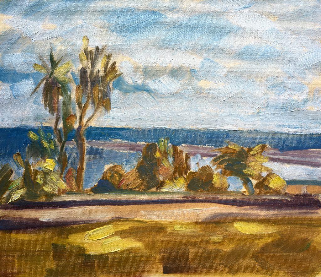 View from Santa Catarina Park