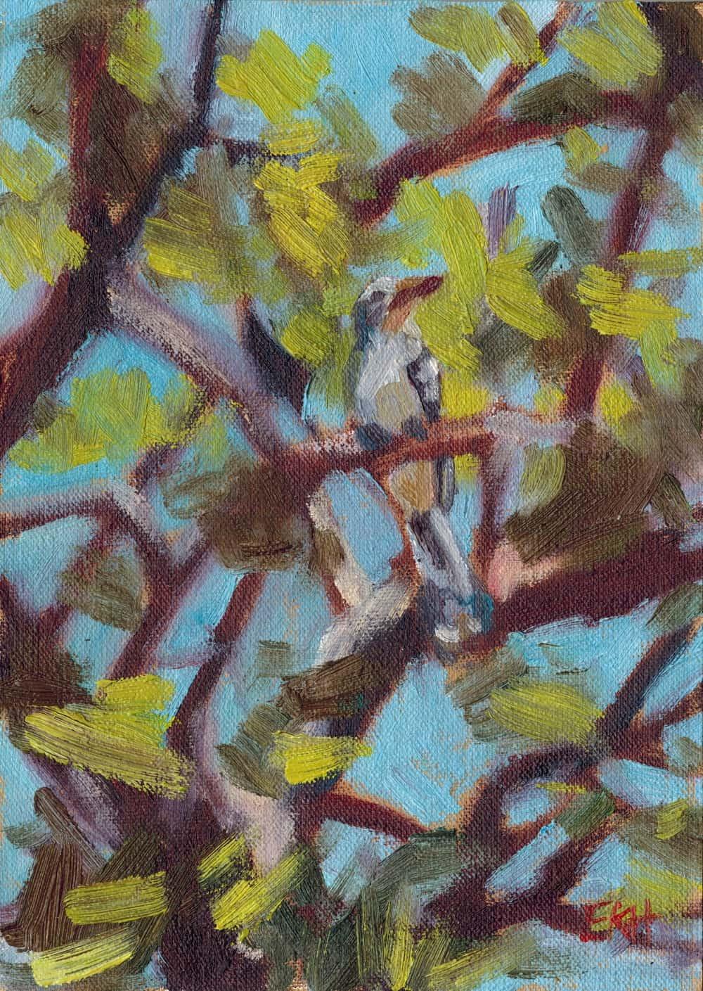 Red Billed Hornbill - Giclee Print - Emma Kate Hulett
